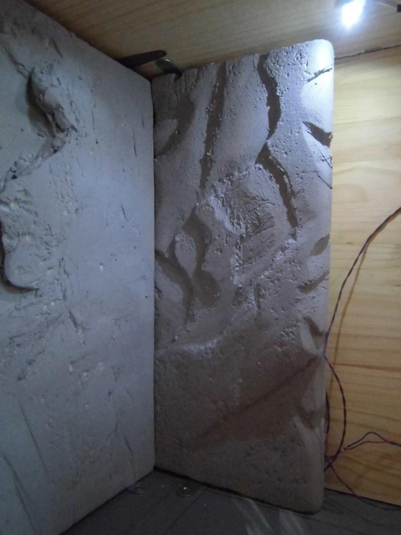 Palais de Jabba, Rancor grotte xxl Cimg2536
