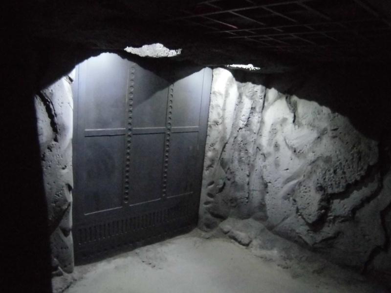 Palais de Jabba / Caverne du Rancor Gentle Giant - Page 3 Cimg2740