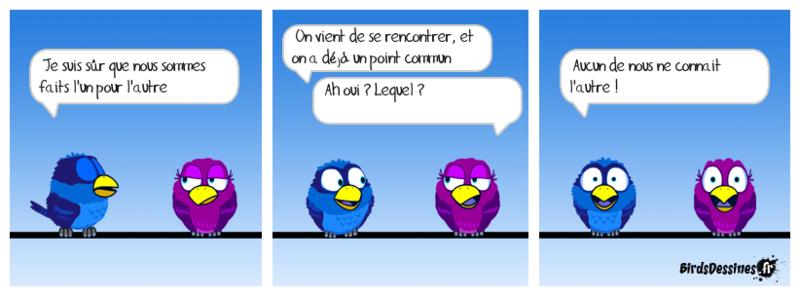 Les Birds - Page 14 Hamste10