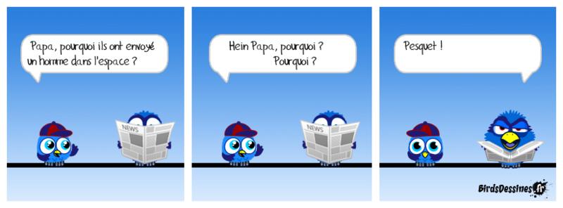Les Birds - Page 15 Jmf08_10
