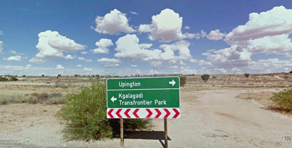 Two Rivers, parc transfrontalier de Kgalagadi en Afrique du Sud. Kgalag10