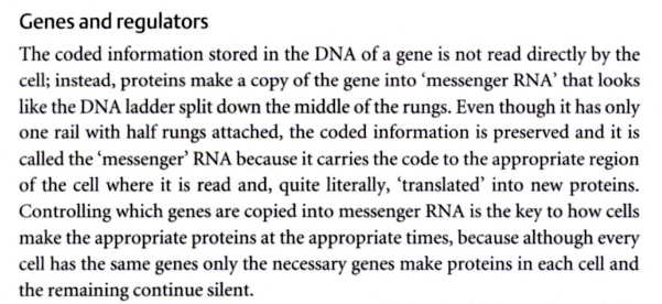 DNA stores literally coded information Genesi10