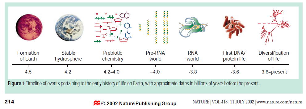 The RNA world, and the origins of life Orgel_10