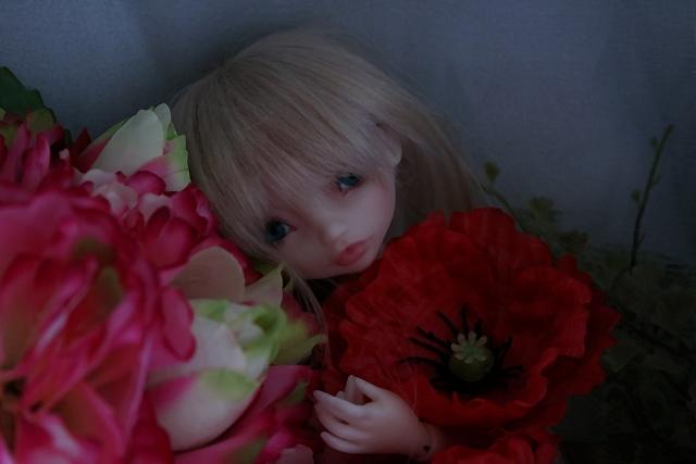 Emily 🎀 Les fleurs [Rhubarbe - Nobles Dolls] - Page 2 Em_0210