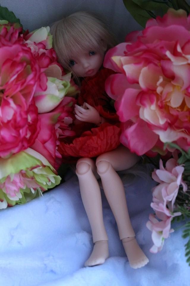 Emily 🎀 Les fleurs [Rhubarbe - Nobles Dolls] - Page 2 Em_0310