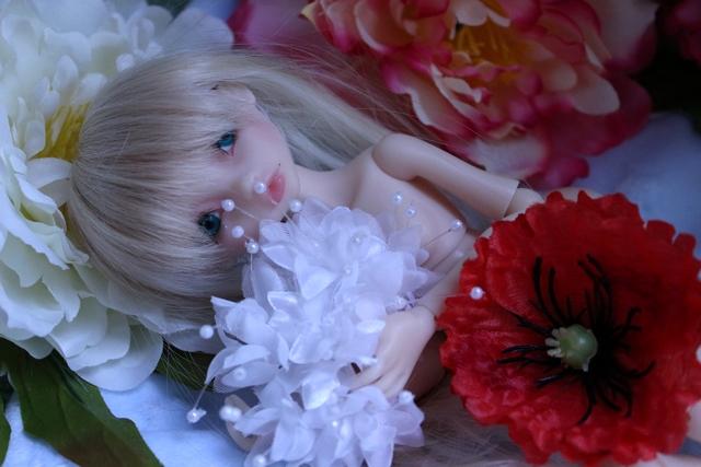 Emily 🎀 Les fleurs [Rhubarbe - Nobles Dolls] - Page 2 Em_0410