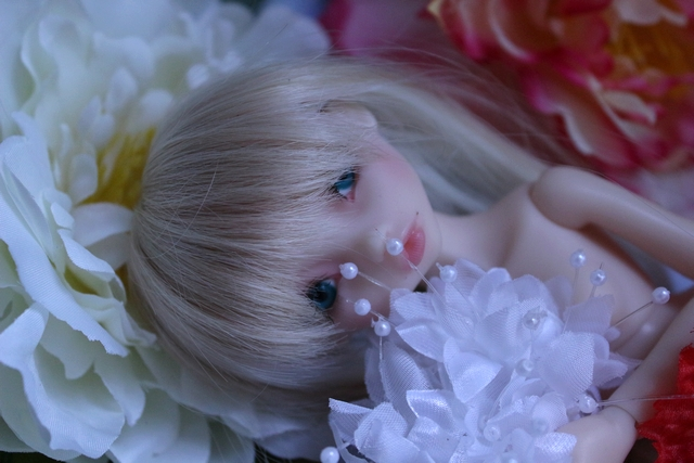 Emily 🎀 Les fleurs [Rhubarbe - Nobles Dolls] - Page 2 Em_0510