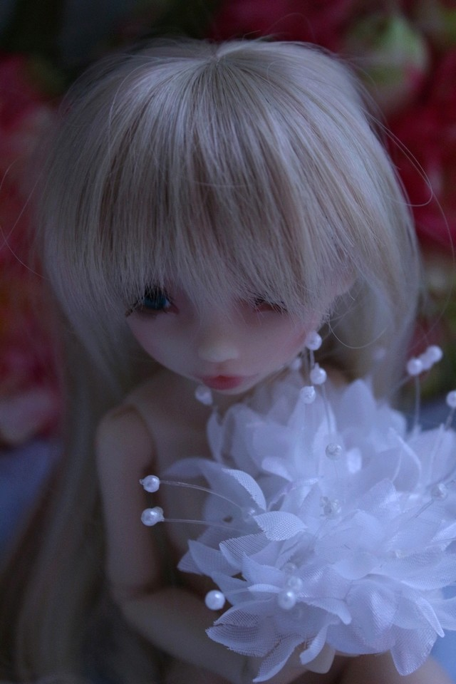 Emily 🎀 Les fleurs [Rhubarbe - Nobles Dolls] - Page 2 Em_0610