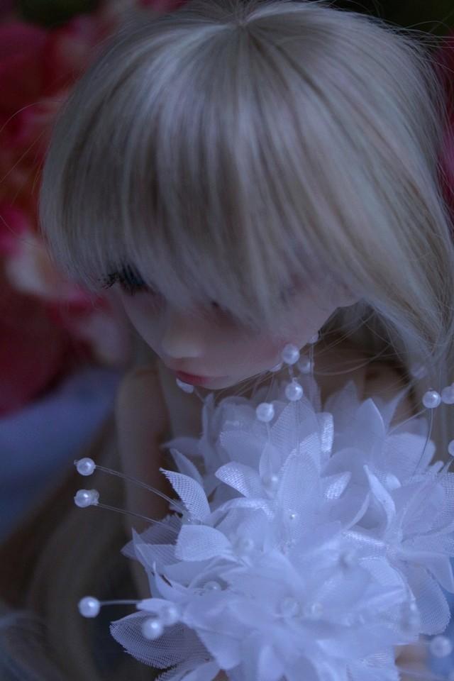 Emily 🎀 Les fleurs [Rhubarbe - Nobles Dolls] - Page 2 Em_0710