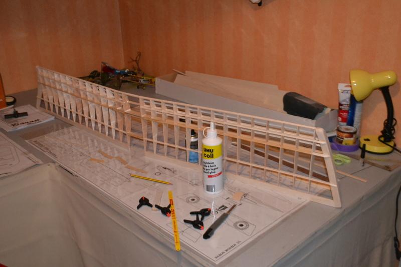 Construction d'un baron  Dsc_0011