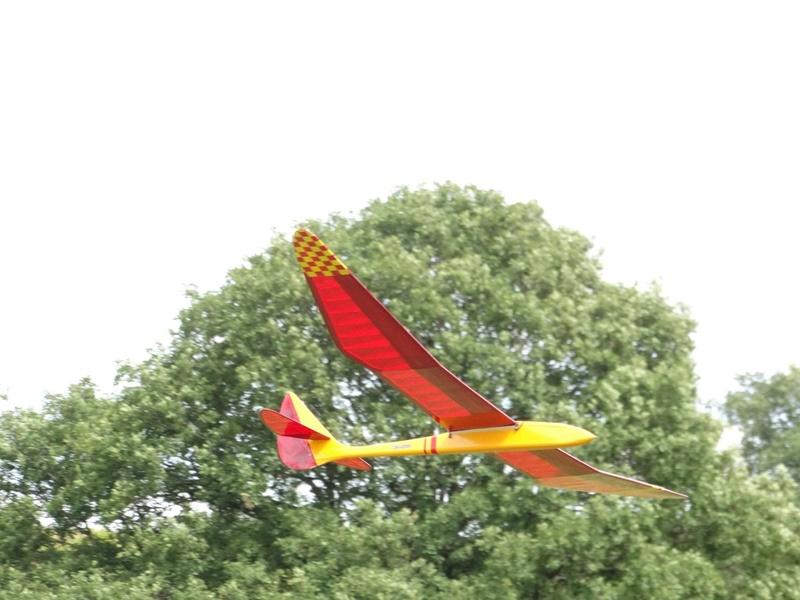 Bird of Time Dsc00911