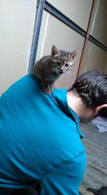 Liloo née en septembre 2016 Liloo_10