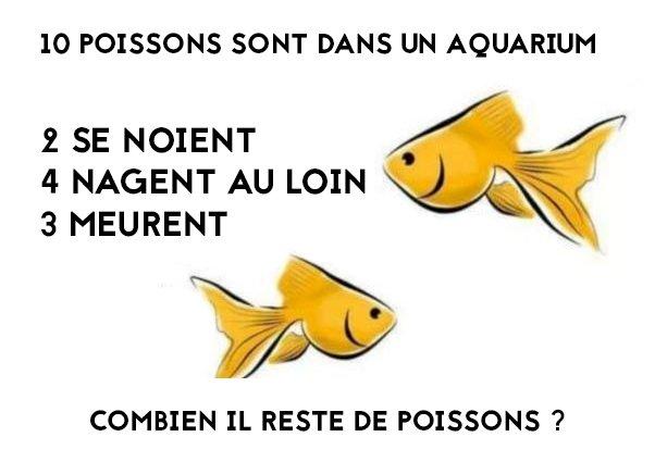 Combien reste t il de poissons dans l' aquarium ? Ff849d11