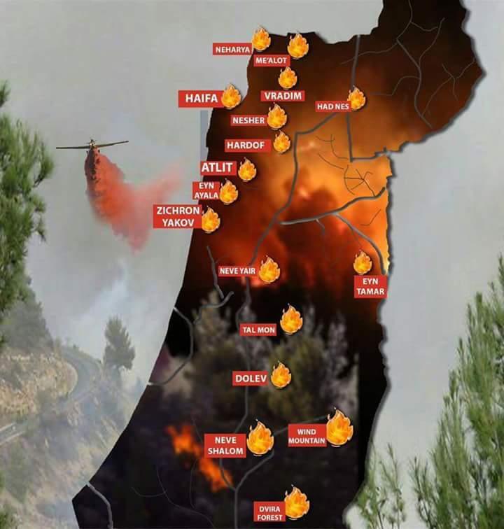 In ganz Israel brennt es....HILFE Feuer_10