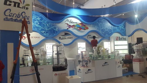 Event biota laut Indofishclub bersama NUSATIC 20161217