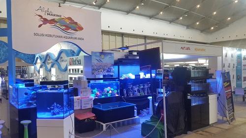 Event biota laut Indofishclub bersama NUSATIC 20161224