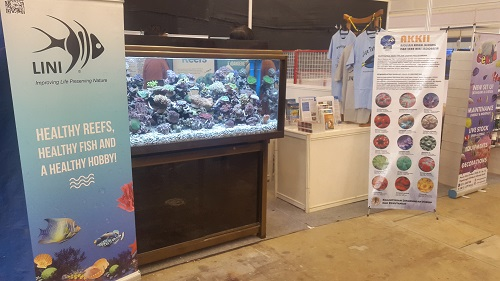 Event biota laut Indofishclub bersama NUSATIC 20161226