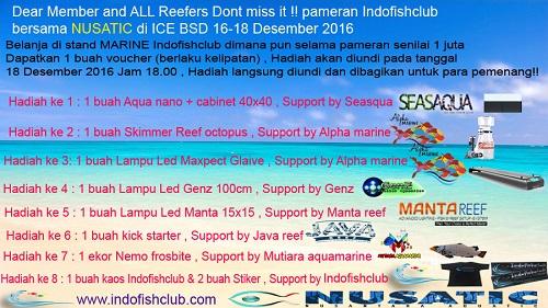 Event biota laut Indofishclub bersama NUSATIC Had_co10
