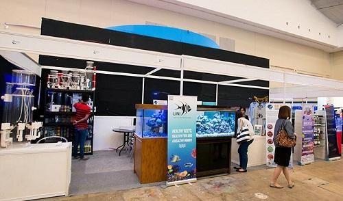 Event biota laut Indofishclub bersama NUSATIC Img-2012
