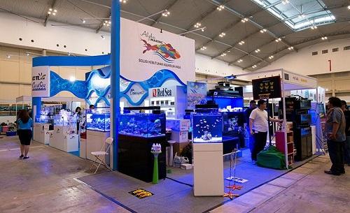 Event biota laut Indofishclub bersama NUSATIC Img-2013