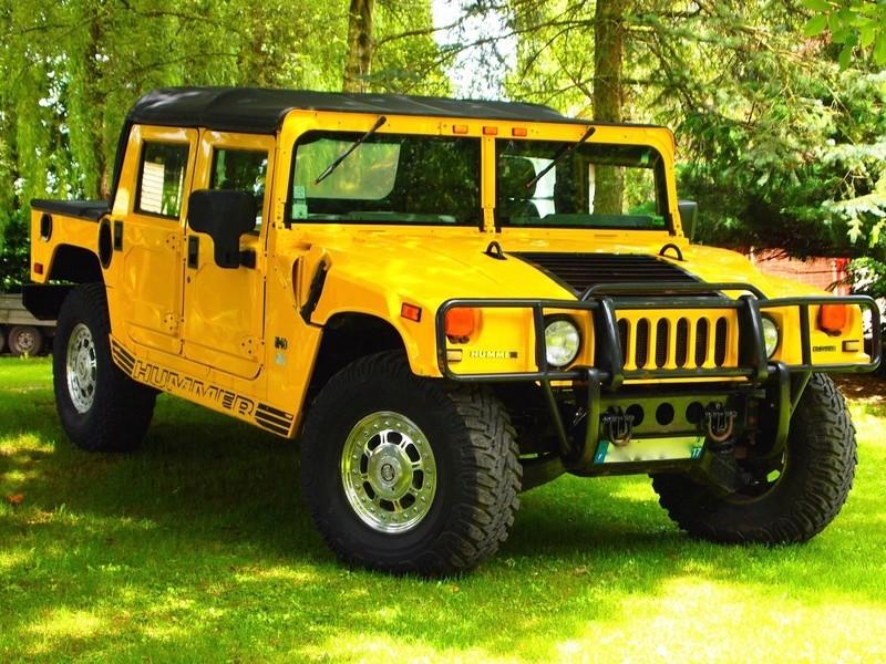 Histoire d'Hummer P1013213