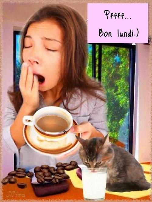 bonjour/bonsoir de Janvier - Page 2 Lundi_12