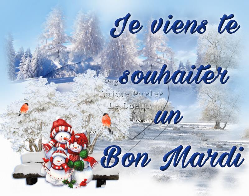 bonjour/bonsoir de Janvier - Page 3 Mardi_12