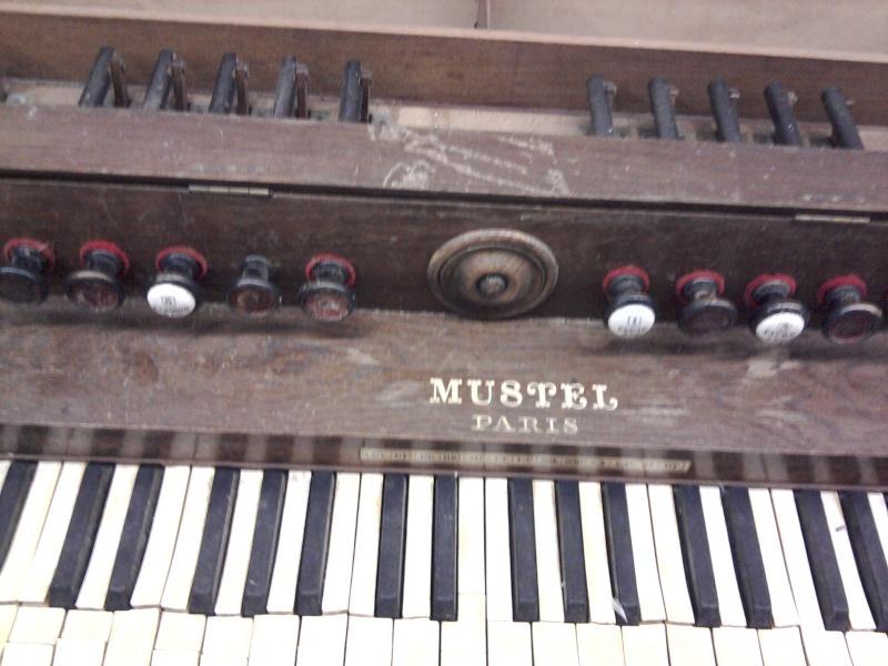 Un petit Mustel éparpillé façon puzzle... 2013-019