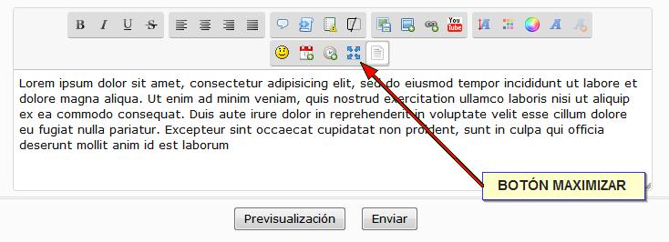 Botón para maximizar el editor de texto Nuevob10