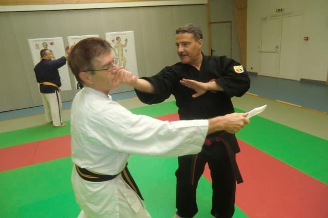 Stage de Kyusho-Jitsu à Puiseaux le 21/10/2012 Cimg9312