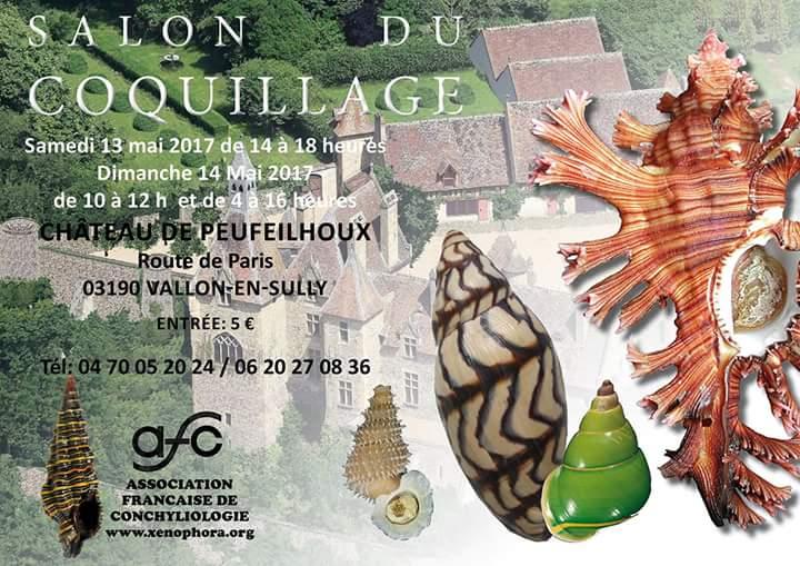 Bourse dans le château de Peufeilhoux à Vallon en Sully (03)- Les 13/14 Mai 2017 Fb_img10
