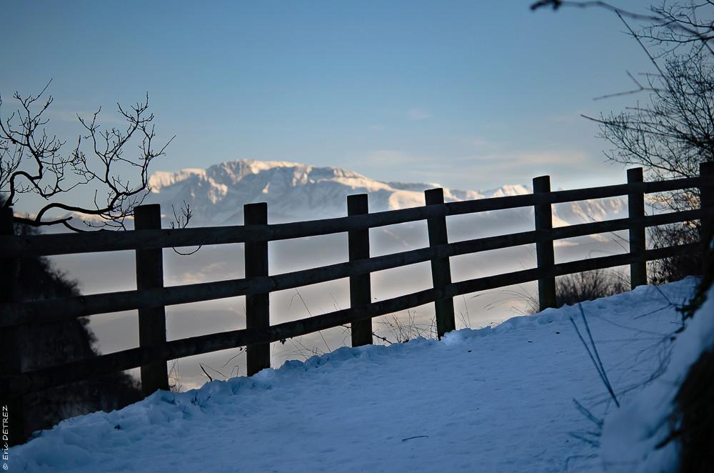 Graines, akènes, plume et neige Dsc_0095