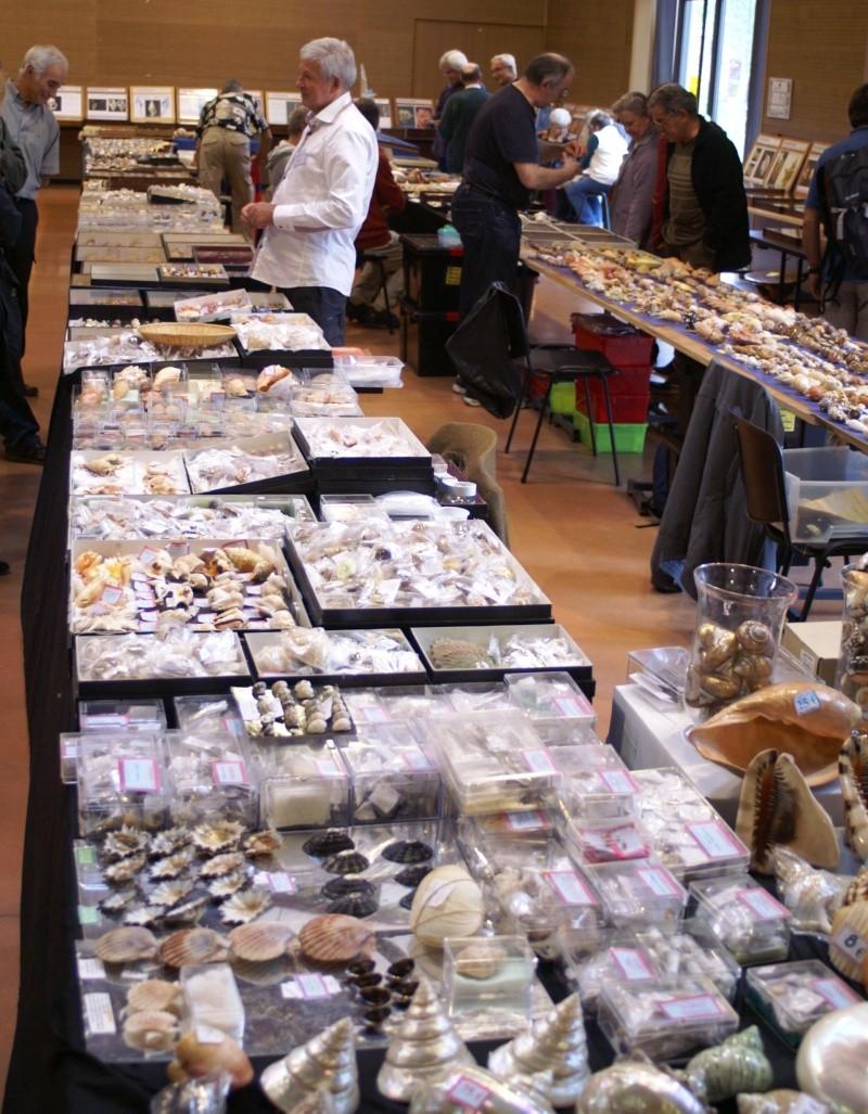 2012 Bourse Toulouges / Perpignan - 20 & 21 octobre Pict0038