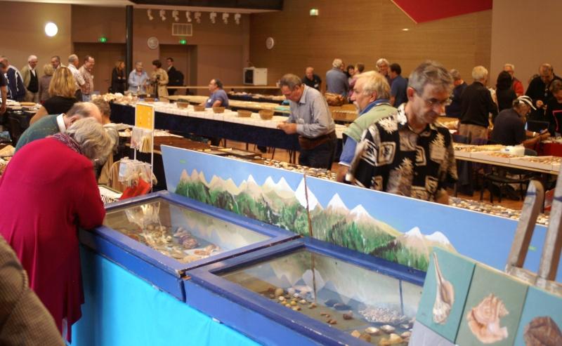 2012 Bourse Toulouges / Perpignan - 20 & 21 octobre Pict0041