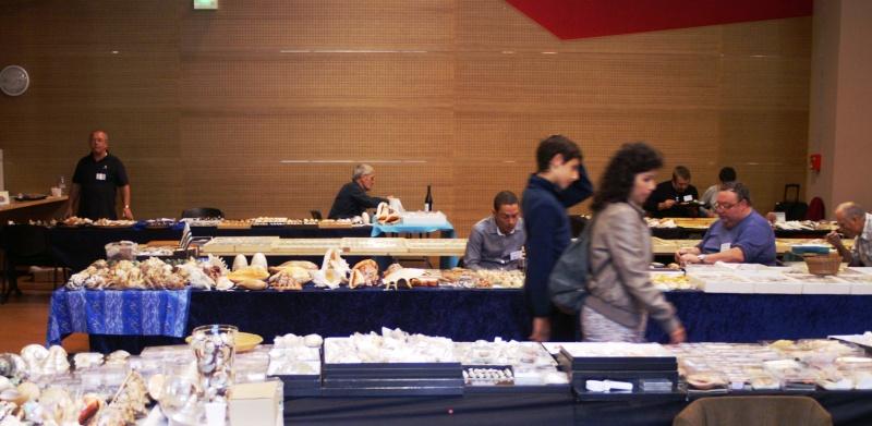 2012 Bourse Toulouges / Perpignan - 20 & 21 octobre Pict0061