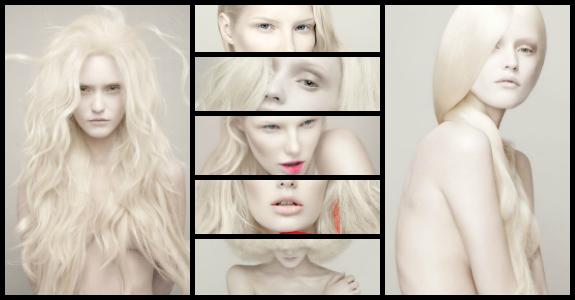 〈  Non-Fiction  〉 Albino10