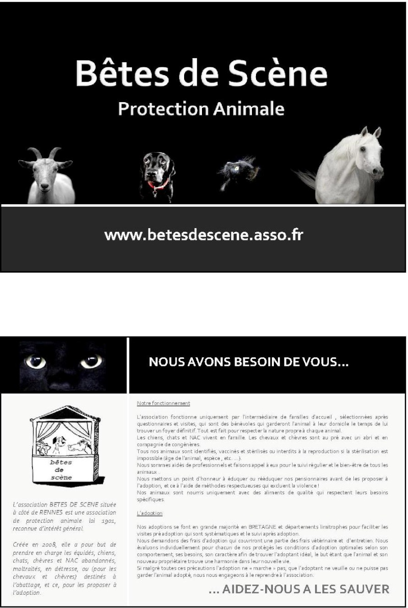 affiches pour stand BDS - Page 2 Carte_10