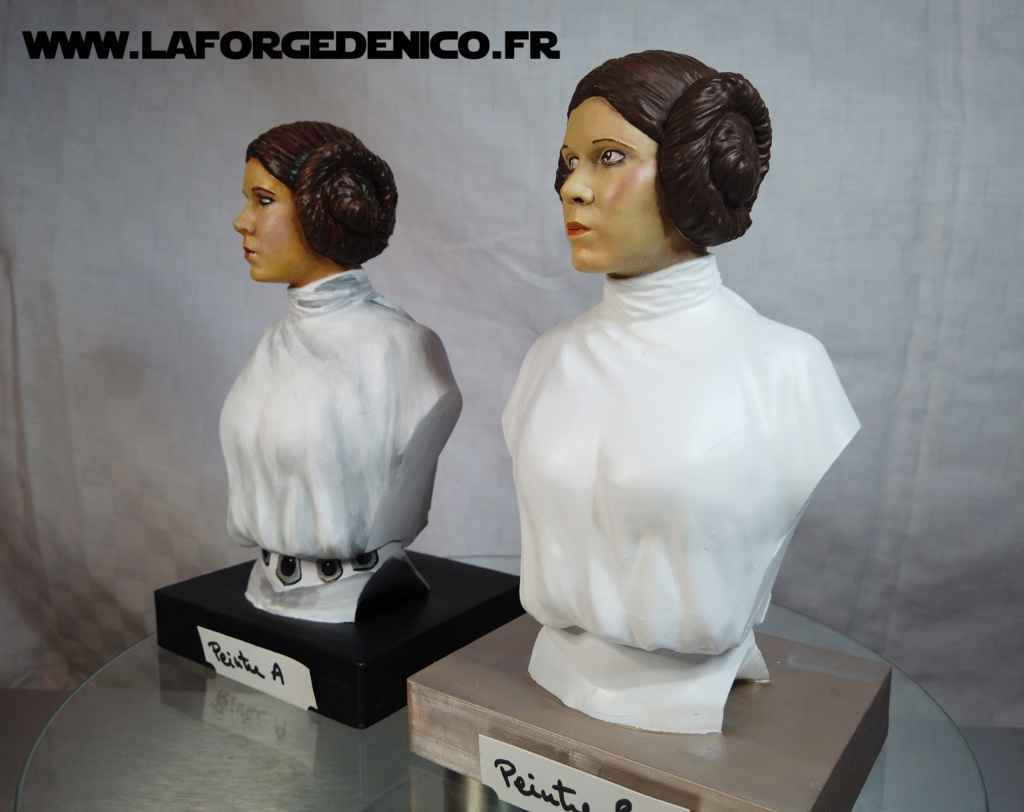 Buste de la Princesse Leia - 2 peintres / 2 techniques Dji_0337