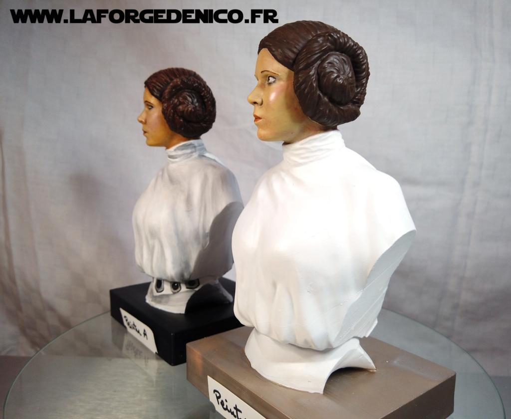 Buste de la Princesse Leia - 2 peintres / 2 techniques Dji_0338