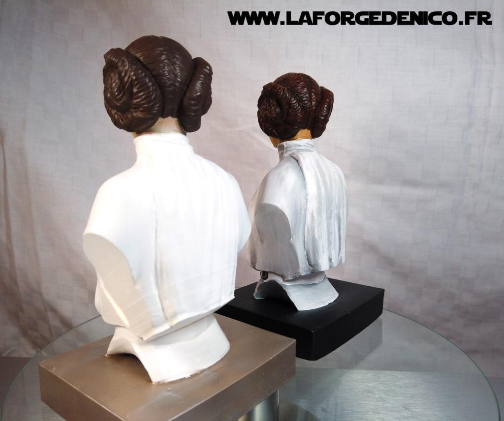 Buste de la Princesse Leia - 2 peintres / 2 techniques Dji_0341