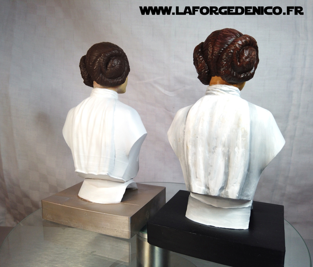 Buste de la Princesse Leia - 2 peintres / 2 techniques Dji_0344