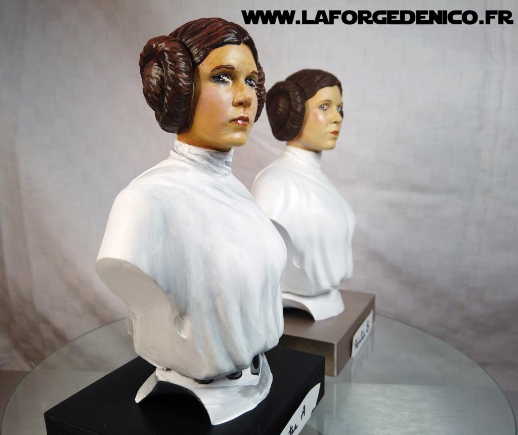 Buste de la Princesse Leia - 2 peintres / 2 techniques Dji_0347