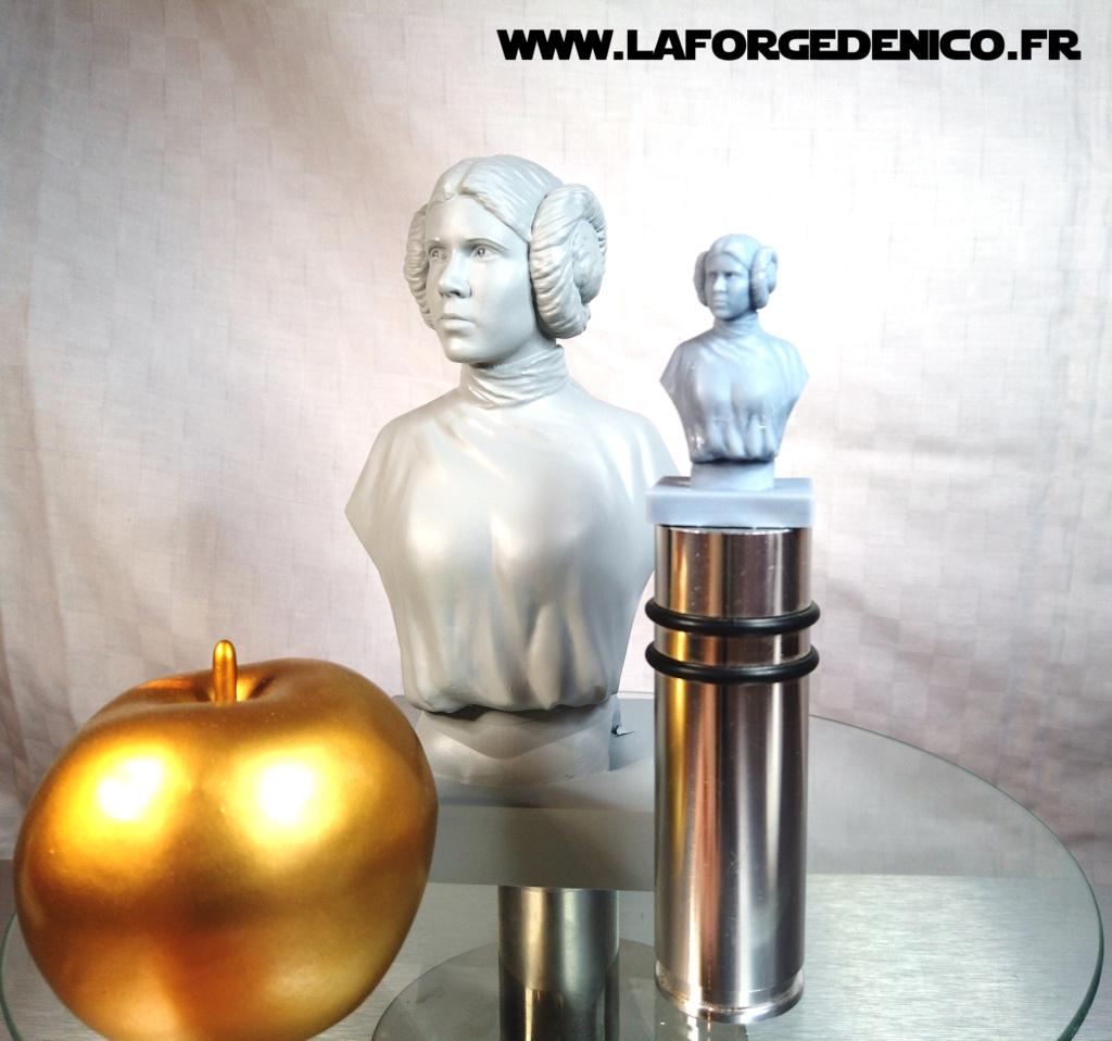 Buste de la Princesse Leia - 2 peintres / 2 techniques Dji_0350