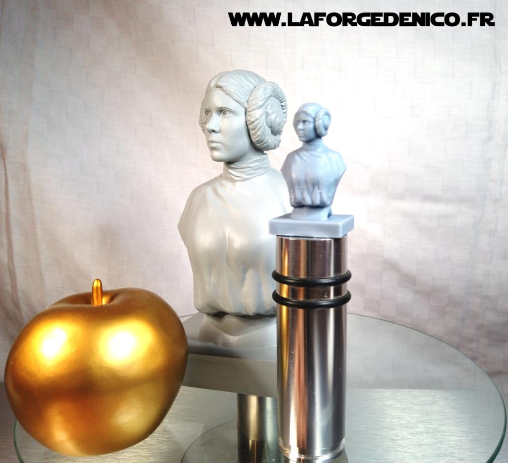 Buste de la Princesse Leia - 2 peintres / 2 techniques Dji_0351