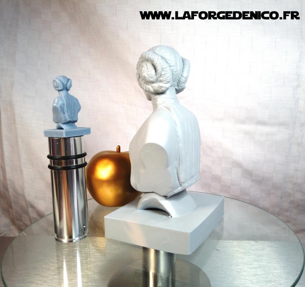Buste de la Princesse Leia - 2 peintres / 2 techniques Dji_0413