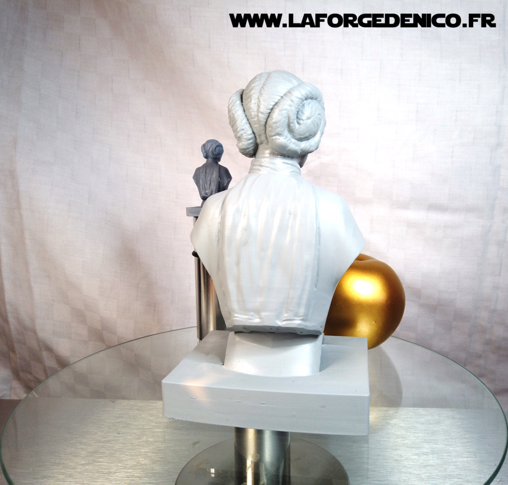 Buste de la Princesse Leia - 2 peintres / 2 techniques Dji_0415