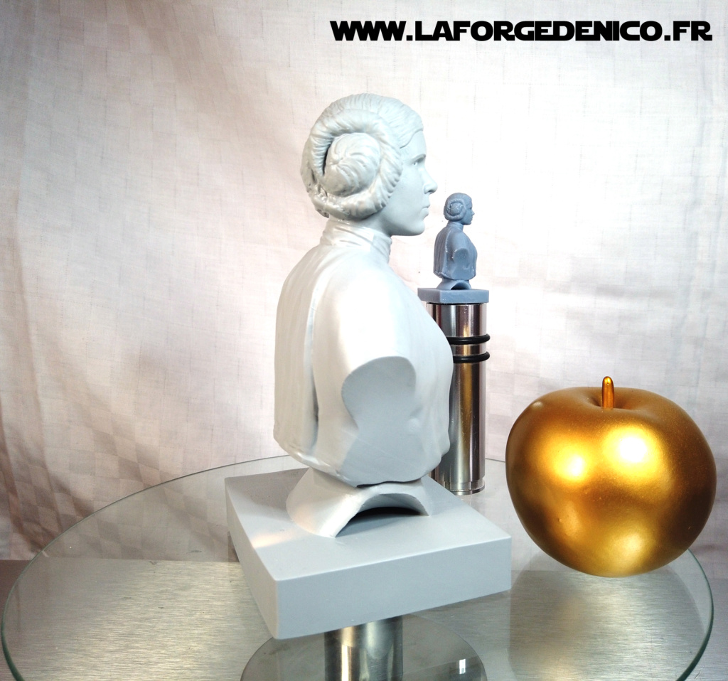 Buste de la Princesse Leia - 2 peintres / 2 techniques Dji_0416