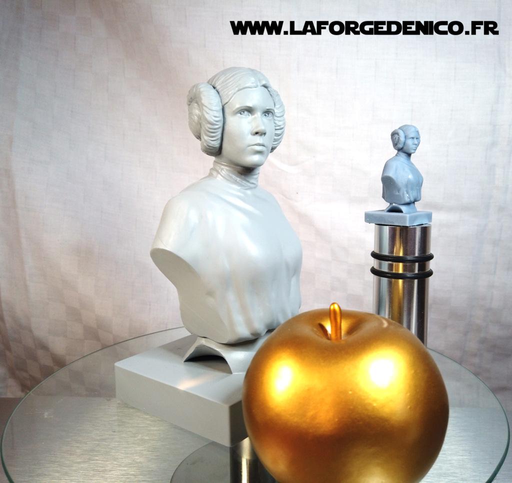 Buste de la Princesse Leia - 2 peintres / 2 techniques Dji_0418