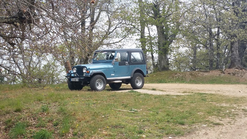 Lame de suspension CJ7 20160410
