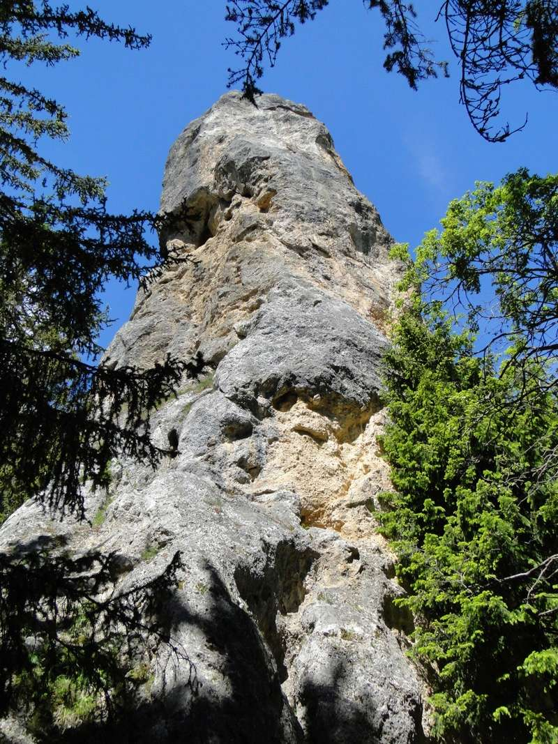 Autour du monolithe de Sardières Dsc04437